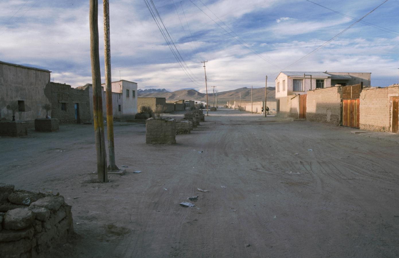 lama-glama-26-bolivia-2001