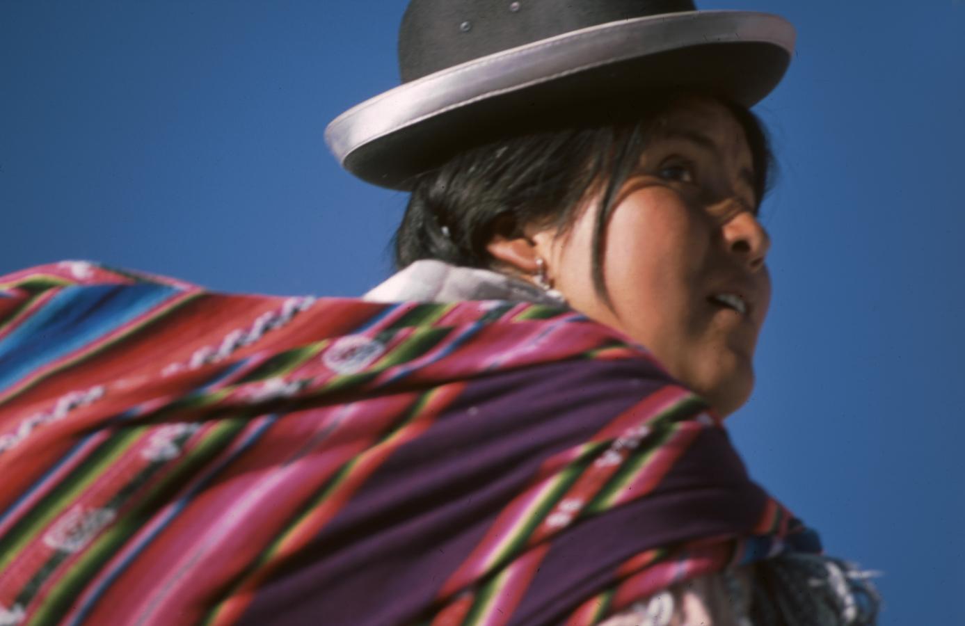lama-glama-31-bolivia-2001