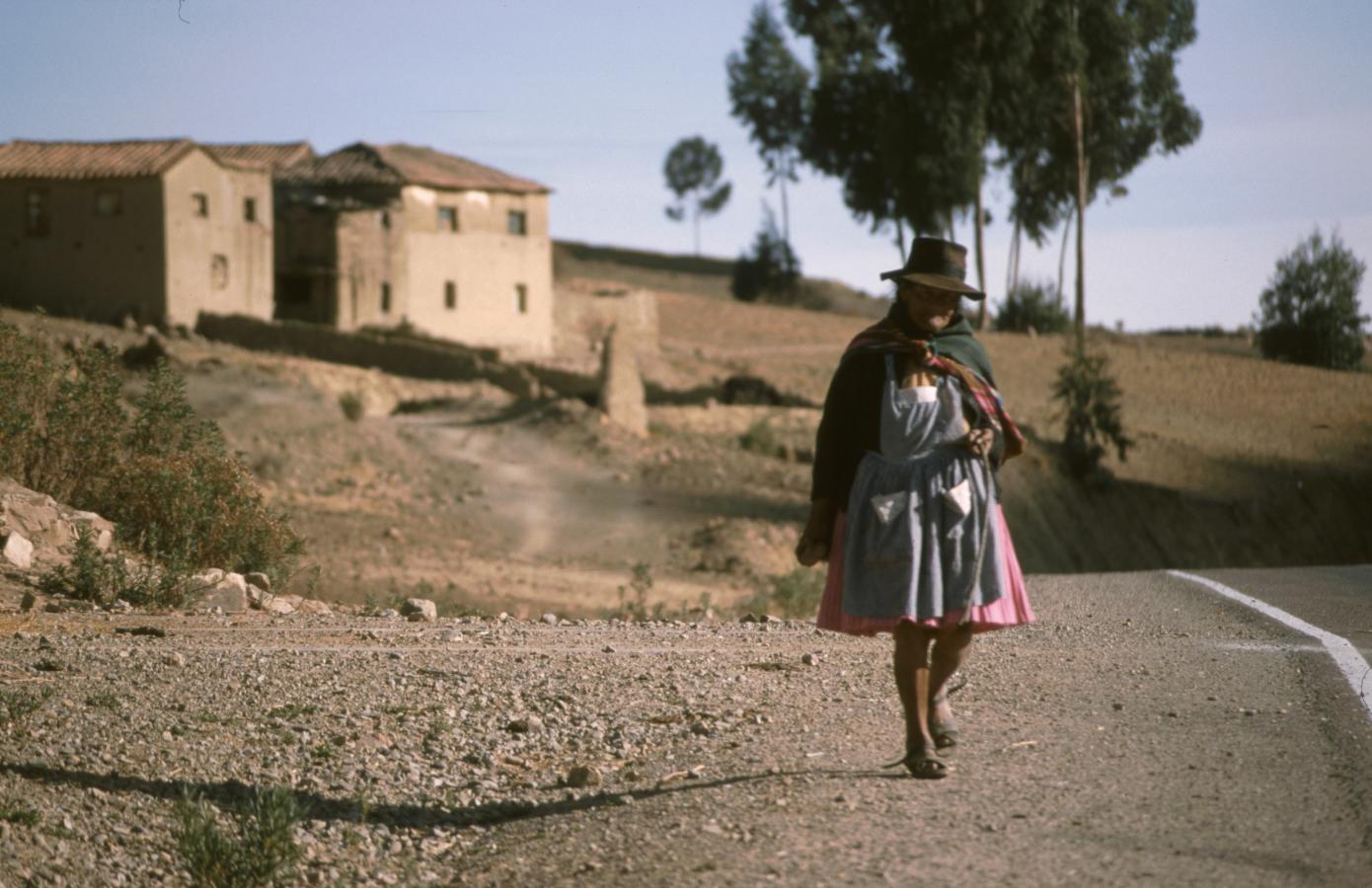 lama-glama-8-bolivia-2001