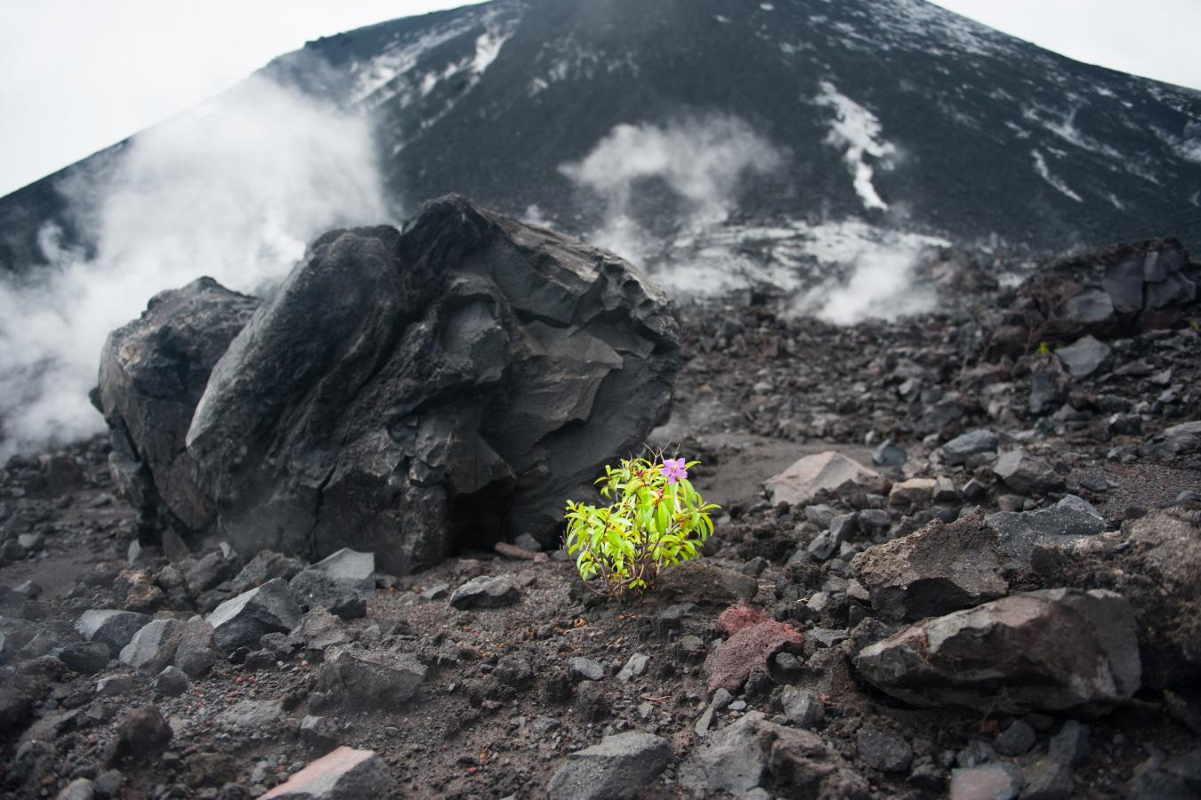 life-at-the-foot-of-a-volcano-java-2010