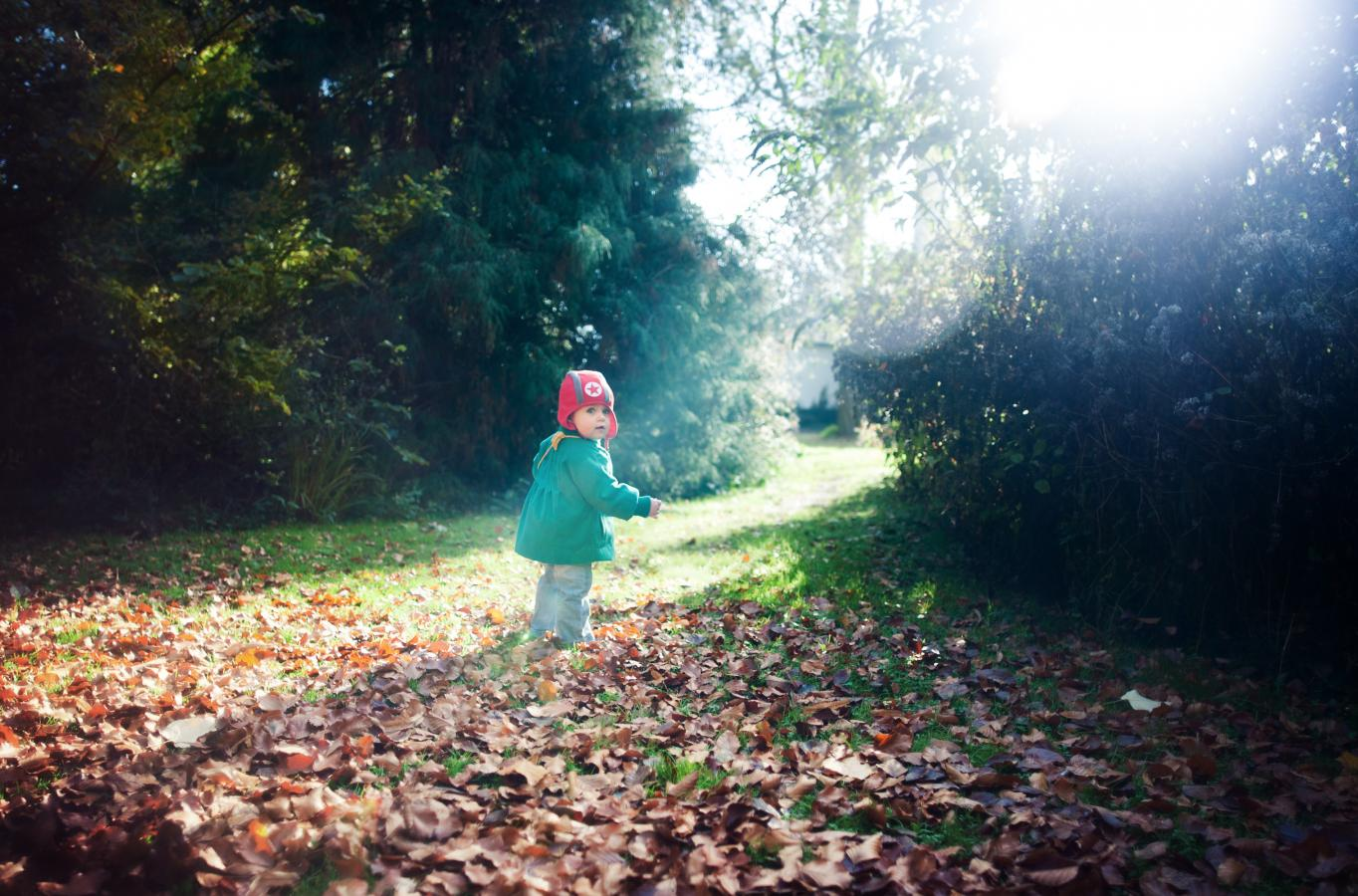 sunny-autumn-days-2-haasdonk-2012